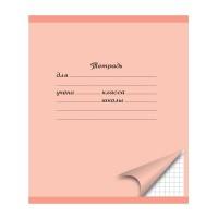 Тетрадь ACTION! ШКОЛЬНАЯ, мелованный картон, клетка,ф. А5, 18 л.|2